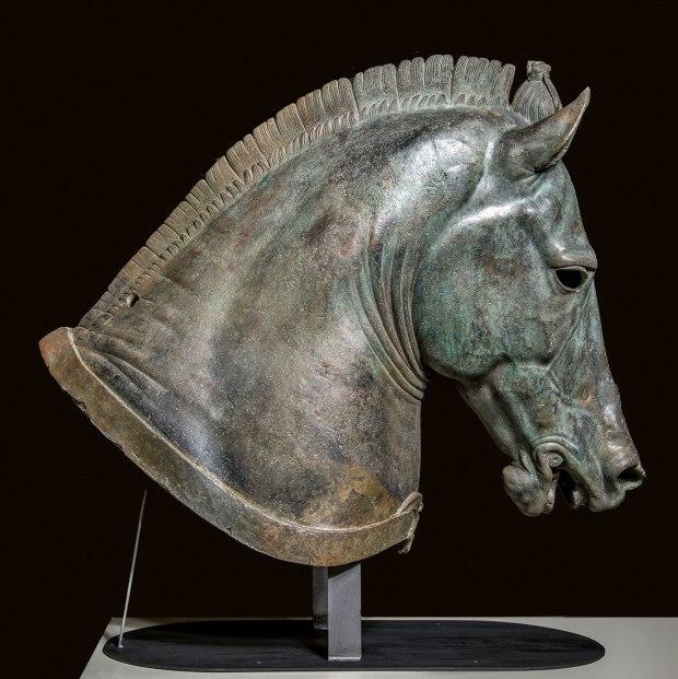 Medici Riccardi Horse