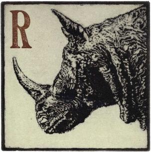 Derek Chambers, Rhino, Ipswich Museum © Derek Chambers