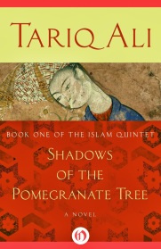 Shadows of the Pomegranate Tree