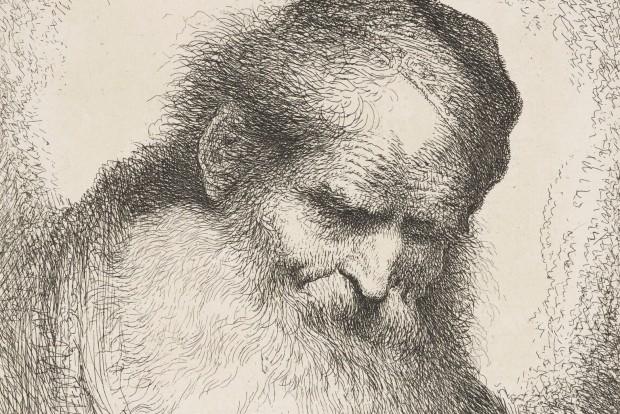 Castiglione: Head of a Bearded Man