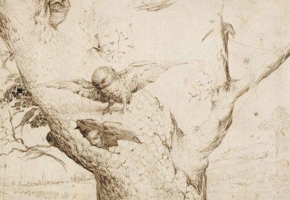 Hieronymus Bosch, The Owl's Nest, Museum Boijmans van-Beuningen, Rotterdam