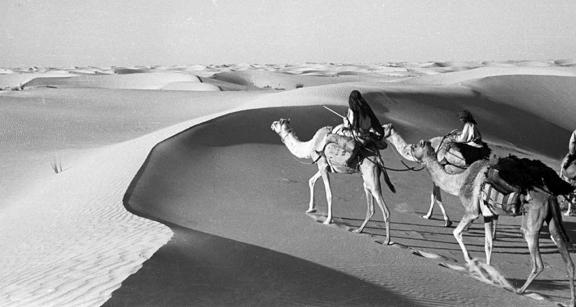 ArabianSands02