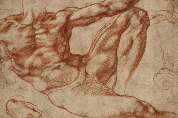 Defining Beauty: Michelangelo's Adam