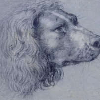 Agostino Carracci, Head of a Spaniel, Kupferstichkabinett, Berlin