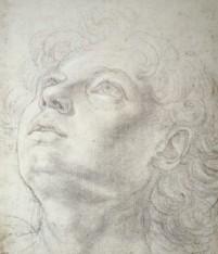 Andrea del Verrocchio, Head of a boy, Kupferstichkabinett, Berlin